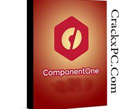 ComponentOne Studio Ultimate 2021 Vol 1 v20211.1.2 + Keygen